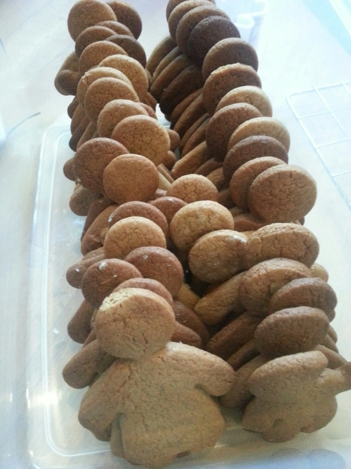 Rows of gingerbread biscuits