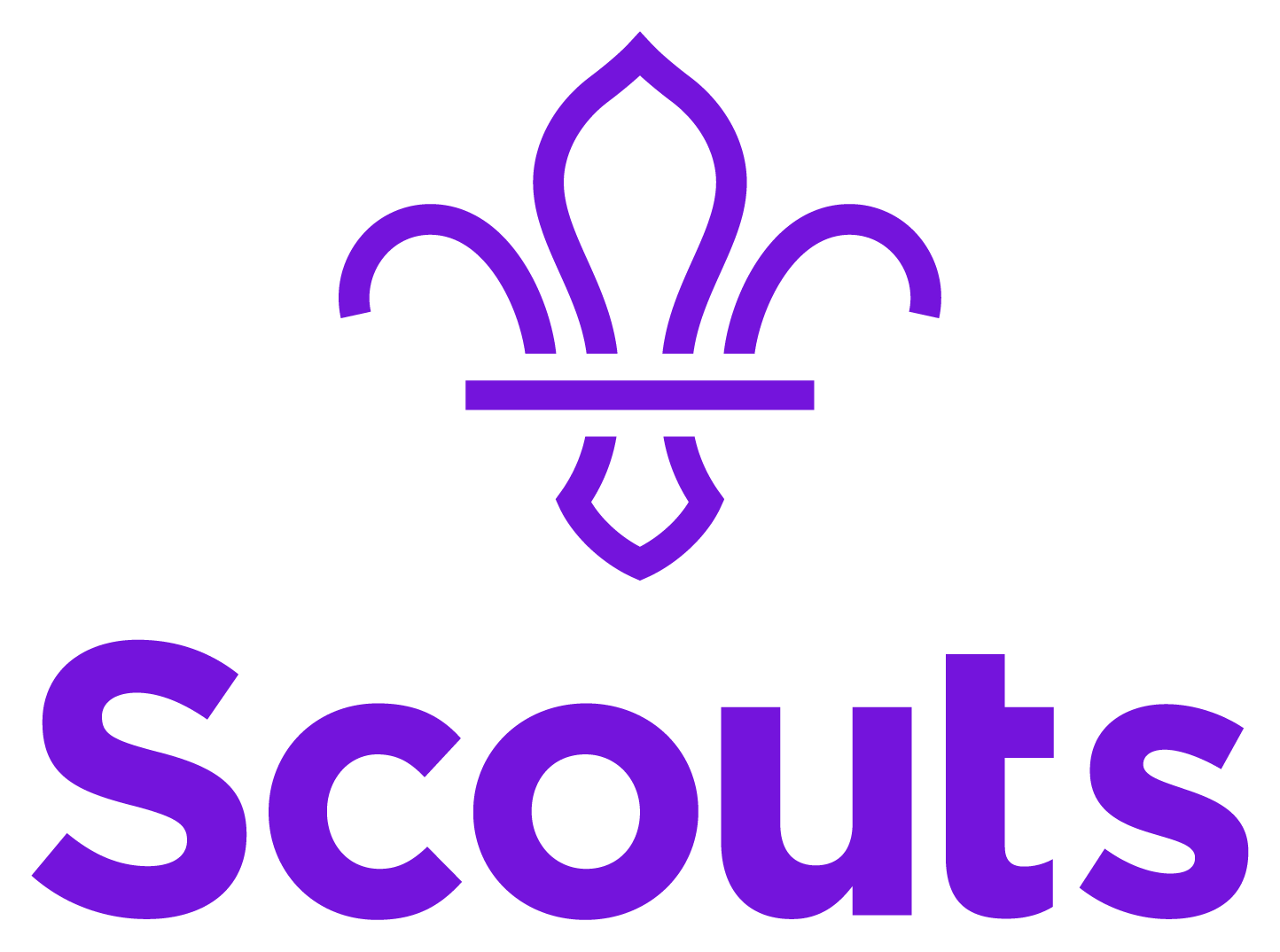 cubs yellow book badges and awards pdf scout australia